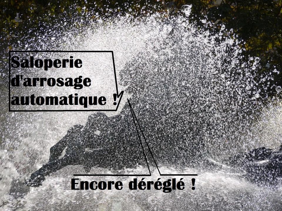 bdc7-arrosage